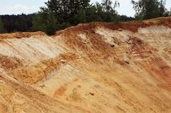 Кабмин дал сыну Сацюка 40 гектаров леса под карьер - фото