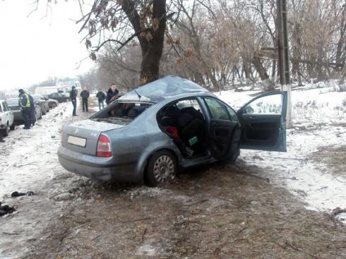 На Донетчине водитель врезался в дерево - двое погибших - фото