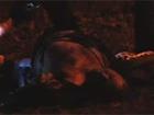 Видео с места убийства Сашки Белого