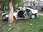 В Прилуках автомобиль врезался в дерево - 5 погибших