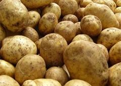 России не нравится украинский картофель - фото
