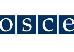 Террористы обстреляли наблюдателей ОБСЕ - фото
