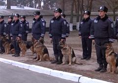 В столичной подземке милиция уже с собаками - фото