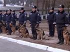 В столичной подземке милиция уже с собаками