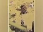 Появилось видео казни вероятно министра обороны Северной Кореи