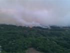 Под Чернобылем масштабно горит сухая трава