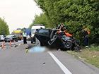 Кот выбежал на дорогу – погибли два человека