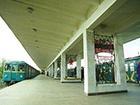 На станции метро «Гидропарк» умерла женщина