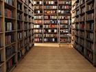 Пьяный киевлянин устроил дебош в библиотеке Измаила