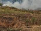 Под Чернобылем масштабный пожар травы и лесной подстилки
