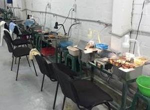 Под Киевом СБУ обнаружила подпольный цех по обработке янтаря - фото
