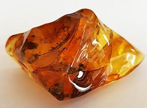 Яценюк уже рассчитывает на 1 млрд гривен от легализации добычи янтаря - фото