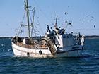 ФСБ РФ задержала трех украинских рыбаков