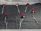 Число погибших в результате теракта в Анкаре возросло до 86