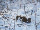 Возле Светлодарска обнаружили российскую кассетную мину