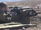 В Донецкой области снайпер ранил волонтера