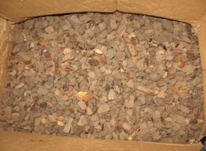 На Закарпатье пограничники нашли в машине янтарь на 200 млн грн - фото