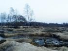 За 10 дней Нацгвардия на Олевщине изъяла килограмм янтаря