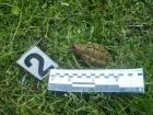В Киеве на газоне под жилой многоэтажкой нашли гранату
