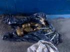 В Одессе возле железнодорожного вокзала нашли пакет с гранатами