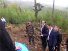 За массовую вырубку лесов поручено уволить начальника Госэкоинспекции Ивано-Франковской области
