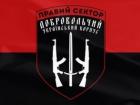 Часть бойцов Правого сектора идет на контракт в ВСУ