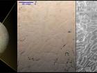 На Плутоне увидели ранее не виданные поверхностные структуры
