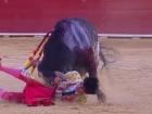 В Испании на корриде бык убил тореодора, впервые за 24 года