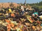В России за год уничтожили 7,5 тыс тонн санкционных продуктов