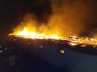 На Киевщине в пожаре погибли 7 тысяч кур