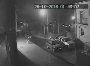 В Петербурге подожгли «фабрику интернет-троллей», - СМИ - фото