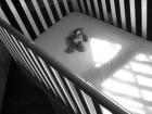 В Казатине малолетняя выбросила своего новорожденного ребенка из окна пятого этажа