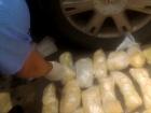 В России задержаны 47 граждан Украины по подозрению в причастности к международному наркосиндикату