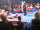 Медведь напал на зрителей в цирке в Белой Церкви