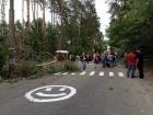 В Оболонском районе произошла перестрелка во время незаконной вырубки леса