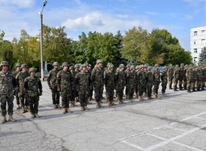 Несмотря на решение правительства, Додон не пускает войска в Украину - фото