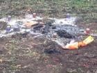 В Одесской области совершили ритуальное убийство