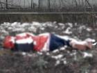 12-летнюю девочку в Кропивницком убила мать, заявил Аброськин