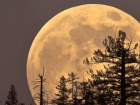 Этой ночью Луна будет крупнейшей в году