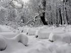 Из-за непогоды в Украине обесточены 390 населенных пунктов