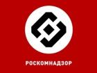 """""""Роскомнадздор"""" попытался объяснить, почему заблокировал Google"""