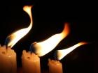 ООС: за прошедшие сутки погибли три защитника