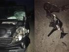 На Львовщине пьяный полицейский насмерть сбил двух человек