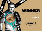 WBC признала Усика боксером года