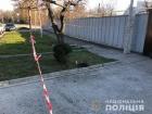 В Запорожье подростки играли найденной гранатой: один умер