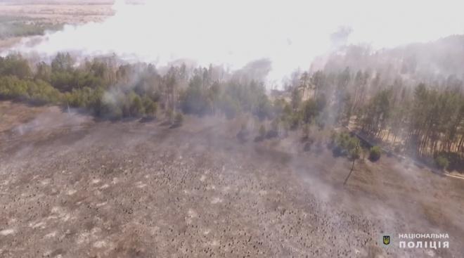 «Ради забавы», сказал задержанный за поджог лесов в Чернобыльской зоне - фото